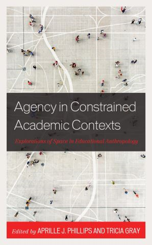 Agency in Constrained Academic Contexts