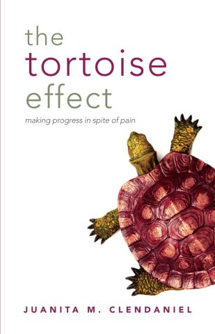 The Tortoise Effect