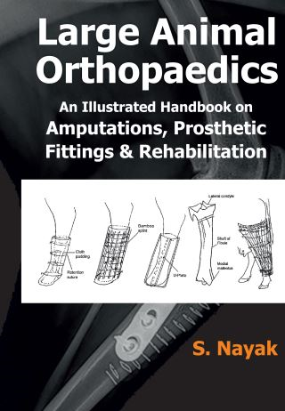 Large Animal Orthopaedics Fittings And Rehabilitations