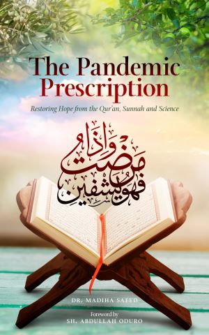 The Pandemic Prescription