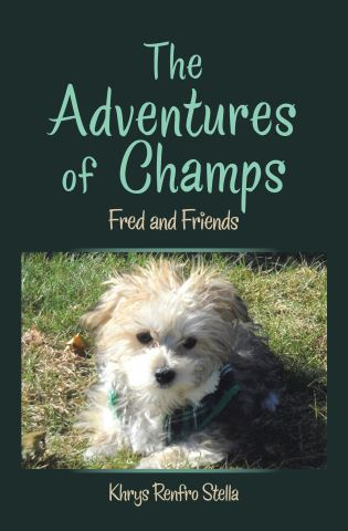 The Adventures of Champs