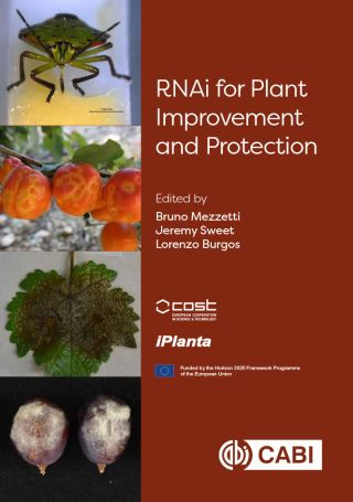 RNAi for Plant Improvement and Protection