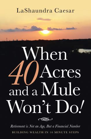 When 40 Acres and a Mule Won't Do!